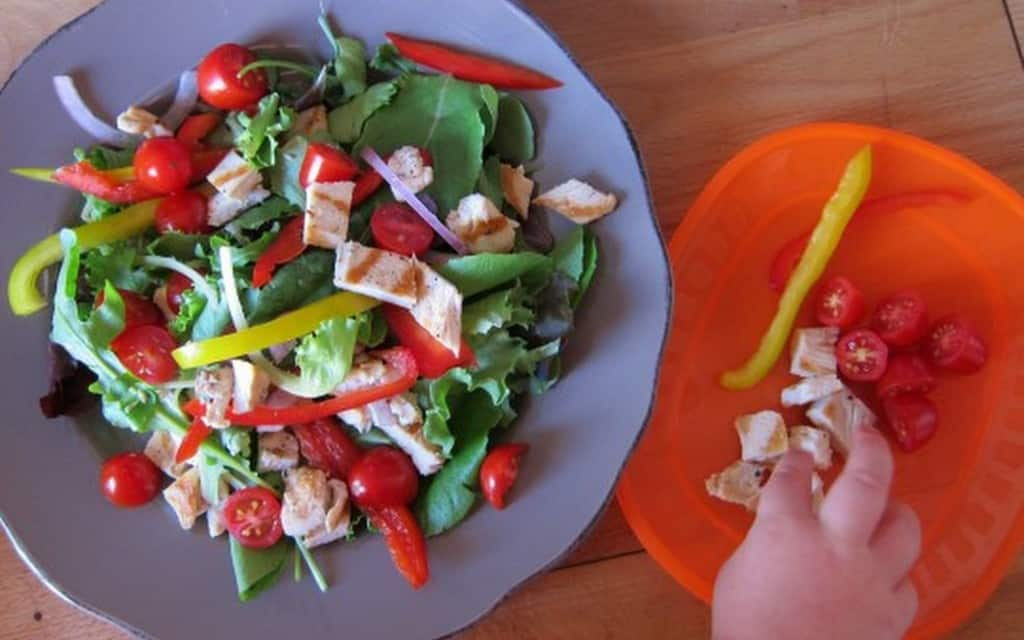 Grilled chicken salad with peppers two ways: one for toddlers, one for adults