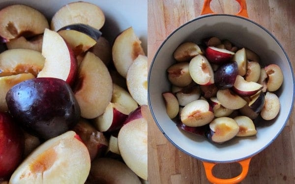Baby food recipe pureed plums forumfinder Choice Image
