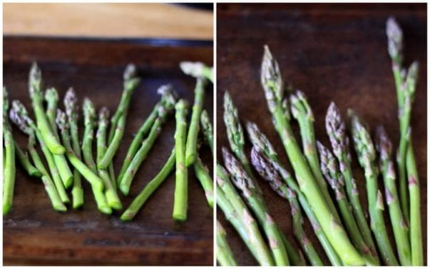 fresh asparagus collage, horizontal