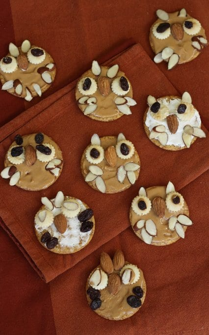 tons of owl crackers