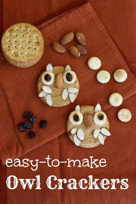 easy-to-make owl crackers