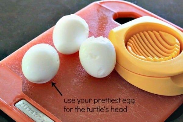 use pretty egg for turtle head