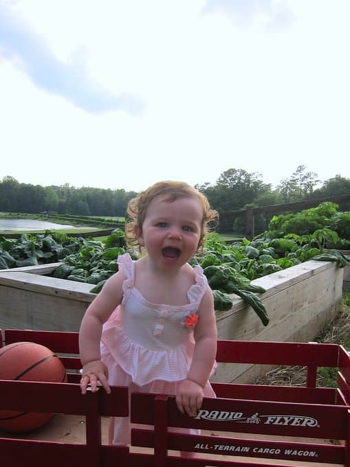 Violet at the spinach garden