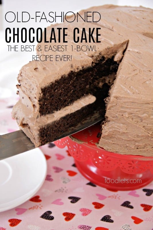The Best Chocolate Cake Recipe Is So Easy You Only Need 1 Bowl